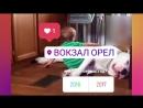 Дети и животные🐶 Самое смешное и милое видео 😆 mp4