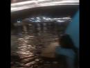 классно поплавали