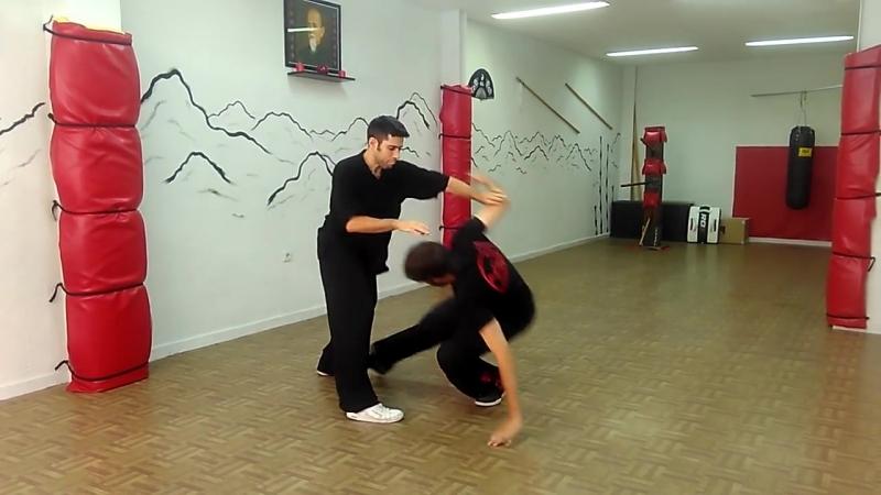 Sifu Roberto Rodríguez Carrasco Choy Lee Fut Kung Fu Salamanca