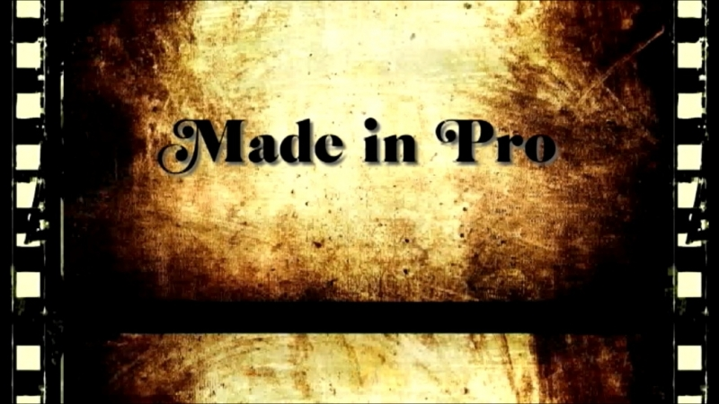 Fabricat în Moldova (Pro Succes)