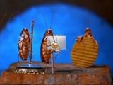 В.Макаров - Четыре таракана и сверчок (мультик)