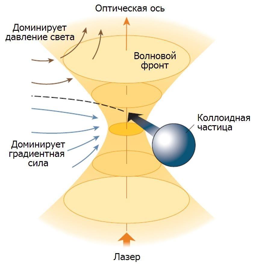 Нобелевская премия по физике 2018 – за «оптические пинцеты» и новаторский метод усиления лазерного луча