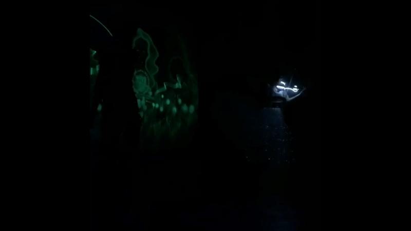 Шоу Световых картин Гудвин и световое скрипичное шоу