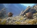 Rollin France - what if animals were round