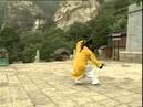 WUDANG Three Treasures TAI CHI by Master Wang Ping