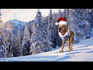 Новогодний футаж. Встречаем 2018 год собаки.