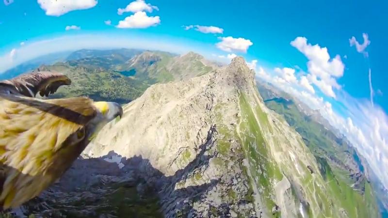 Альпы с высоты птичьего полёта