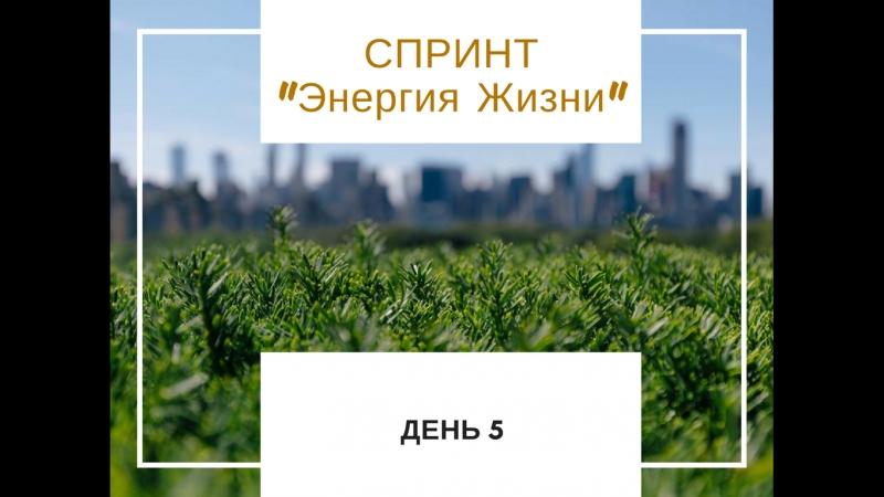 Спринт Энергия Жизни День 5