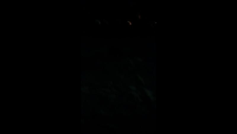 Настя Ложечко Live