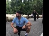 Пастушок Зак
