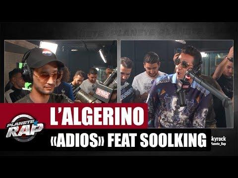 L'Algérino Adios Feat. Soolking PlanèteRap