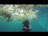 Британский дайвер Рич Хорнер, проживающий в Индонезии, показал, насколько сильно загрязнено море, проплыв сквозь мусор в воде у