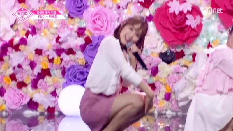 PRODUCE 48   FNC — Пак Хэюн   다시 만나 Concept Evolution fancam