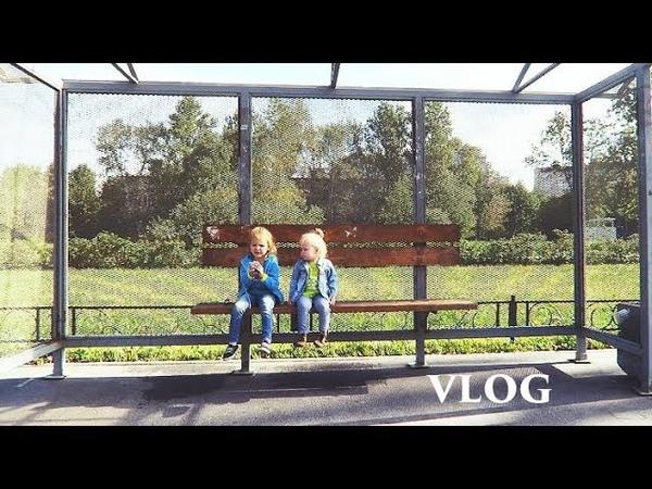 Vlog букет лаврушки садик кнопка ютуб Senya Miro