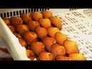 Lincroyable résurrection des madeleines normandes - Tout Compte Fait TCF