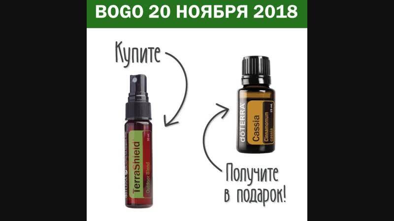 BOGO 2_20 НОЯ