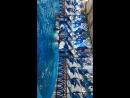 Шоу в дельфинарии в г.Сочи