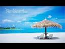 Тони Димитрова - Сто горещи дни
