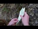 Оригами журавлик 3 из wishes коробочки