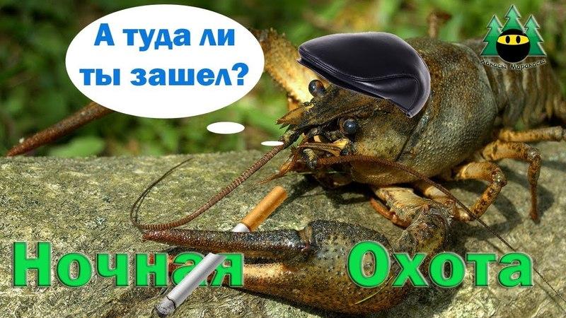 Ночная охота на раков   Night hunting for crayfish