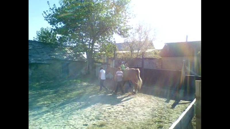 Семён Пупынин (5 лет). Семейный конный клуб Живая тропа. Май 2018