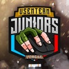VsemTeam Juniors League | СS:GO
