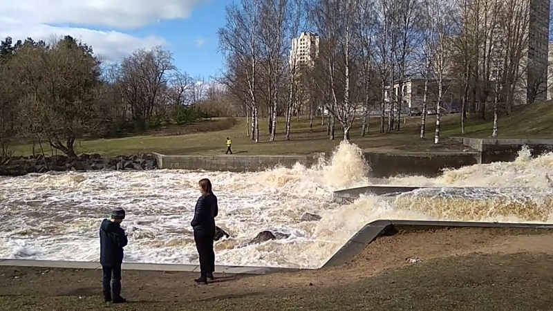 Шипучка, плотина Гаусмана в Сестрорецке