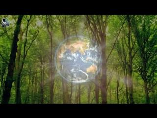 Stive Morgan - The Valley Of Dreams (demo) [ Video Edit ]