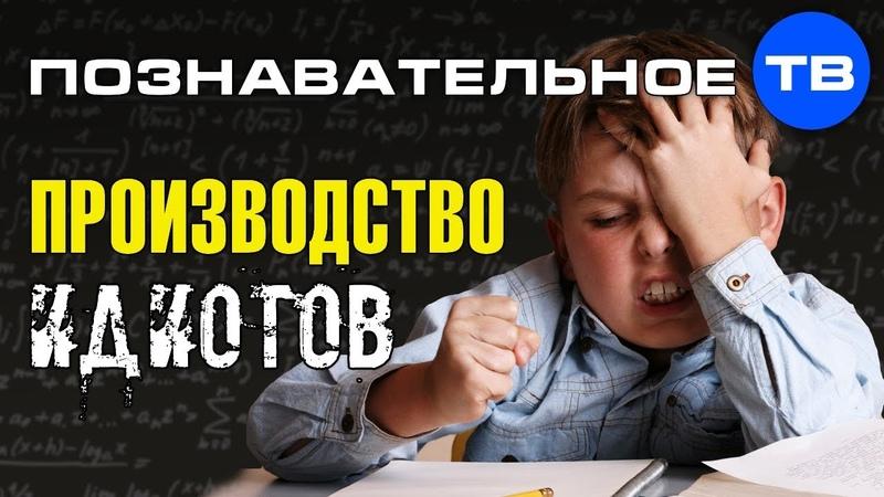 О системе образования и закономерностях жизни общества (Познавательное ТВ, Михаил Величко)