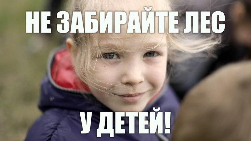Власти Щёлковского района. Не рубите лес оставьте его нашим детям! Не нарушайте конституцию!