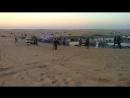 Деревня бедуинов в пустыне Эмиратов. 2018
