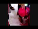 Поставила школьницу на колени и вынудила вылизывать им ботинки
