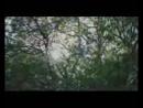 Tuğçe Haşimoğlu Bir Ömür Boyu Official Video 144p 3gp