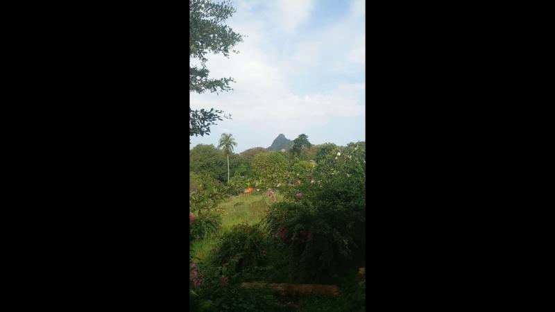 Тайланд, Phi Phi Island