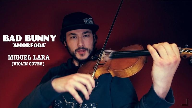Bad Bunny Amorfoda (Miguel Lara Violin Cover)