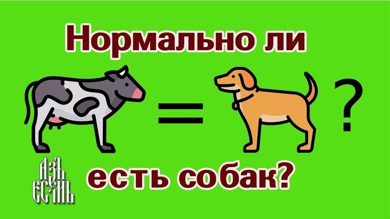 Нормально ли есть собак? (Эд Уинтерс (ака Earthling Ed)