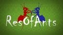 Night 10 VIDEO x16 Ant wars Муравьиная ферма ResOfAnts Муравьи Camponotus Diacamma Ants
