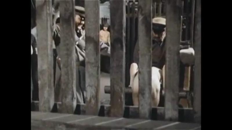Похождения бравого солдата Швейка. 1972