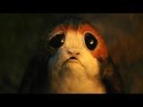 Чуи и порги. Люк соглашается обучать Рей Звёздные войны. Эпизод VIII Последние джедаи