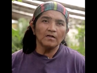 Surinforma - el pueblo mapuche y el estado chileno tienen...