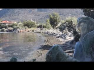 Побережье греческого города окутала гигантская паутина