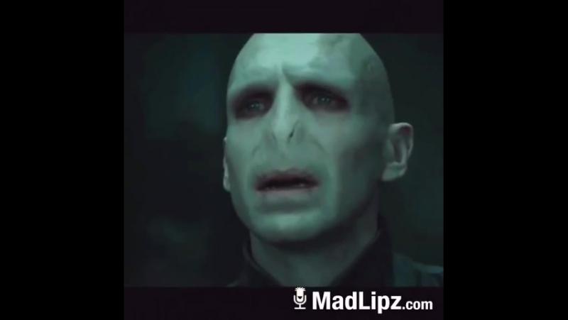 Гарри джашь