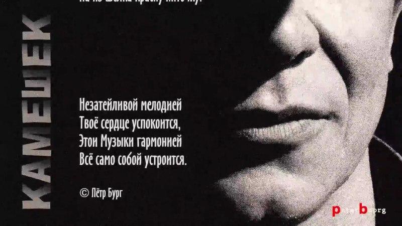 Камешек Пётр Бург