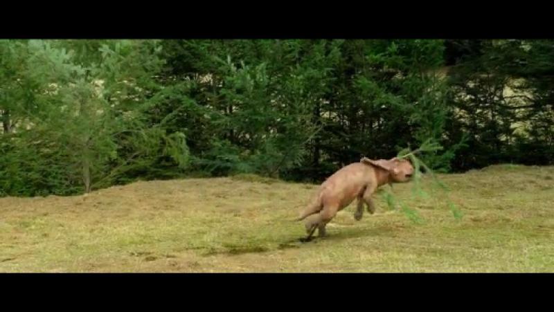 «Прогулки с динозаврами 3D» Walking with Dinosaurs 3D, 2013г