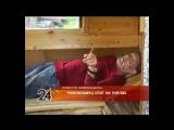 Житель Нижнекамского района спит на пчёлах и уверяет, что это очень полезно