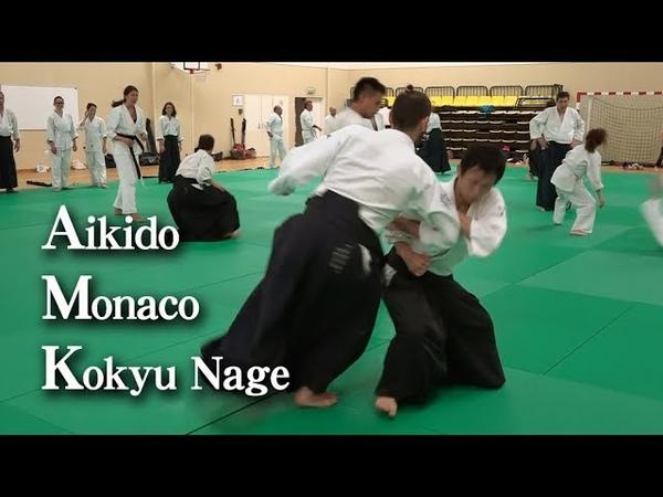 合気道 呼吸投げ03 Aikido seminar in Monaco - Kokyu Nage