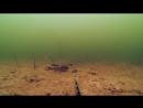 ВОТ ЭТО АТАКА ЩУКИ НА КАРАСЯ Рыбалка зимой на щуку и Подводная съемка