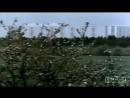 А я хочу вернуться в Советский Союз автор и исполнитель Ольга Дубовая Мы из