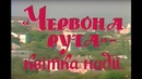 Фільм про Перший фестиваль «Червона рута – квітка надії» 1989 р. / Укртелефільм