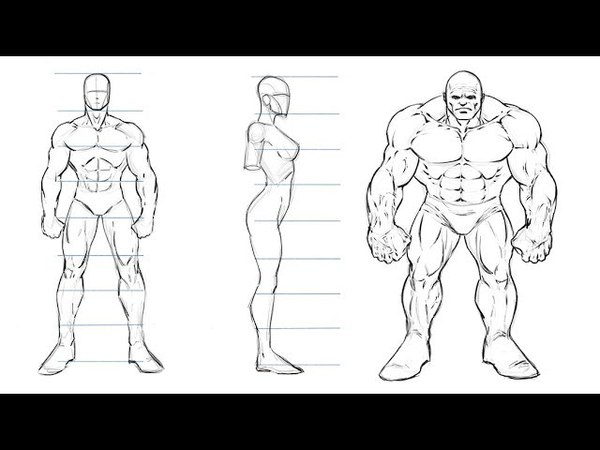 How to Draw Comic Book Characters - Studying Proportions